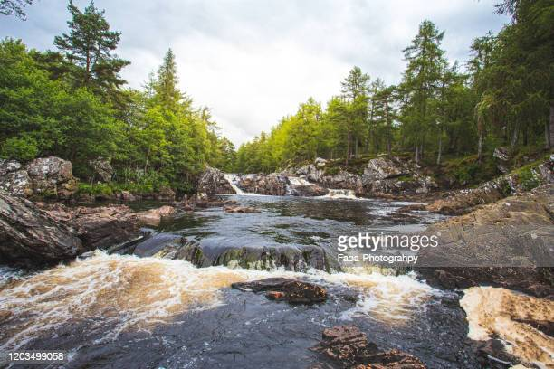 rapids - river stock pictures, royalty-free photos & images