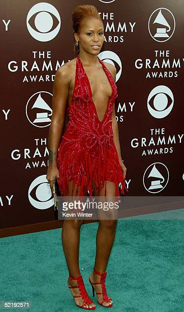 Rapper Eve arrives to the 47th Annual Grammy Awards at the Staples Center February 13 2005 in Los Angeles California