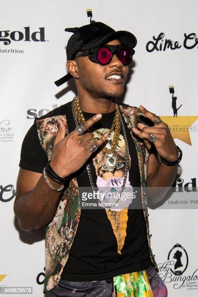 Rapper 'iAmMoshow' attends 'CATstravaganza featuring Hamilton's Cats' on April 21, 2018 in Hollywood, California.