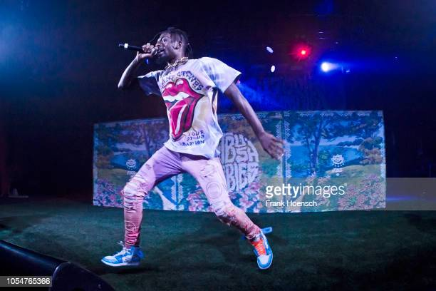 Rapper Meechy Darko of the American band Flatbush Zombies performs live on stage during a concert at the Astra on October 08 2018 in Berlin Germany