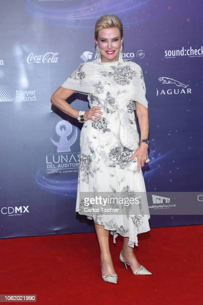 Raquel Bessudo poses for photos on the red carpet before the XVII Lunas del Auditorio award ceremony at Auditorio Nacional on October 31 2018 in...
