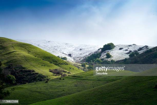 rare snowfall on mission peak in san francisco bay area - fremont california stock pictures, royalty-free photos & images