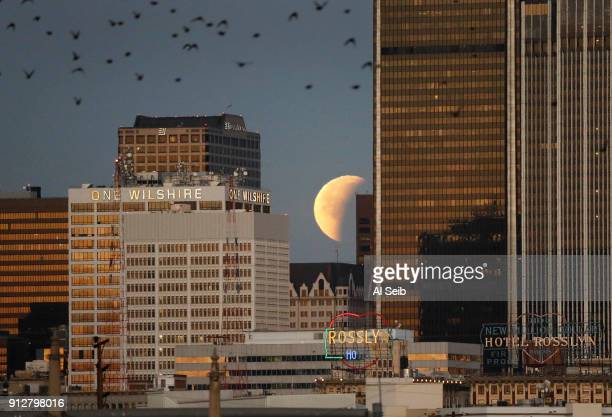 A rare Super Blue Blood Moon sets over downtown Los Angeles Wednesday morning January 31 2018 The Blue Moon a total lunar eclipse and a super moon...