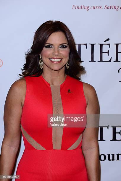 Rashel Diaz attends the 12th Annual FedEx/St Jude Angels And Stars Gala at JW Marriott Marquis on May 17 2014 in Miami Florida