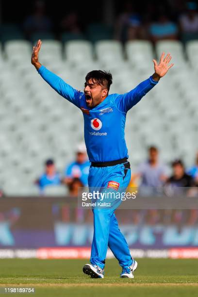 Rashid Khan of the Strikers celebrates after taking a hat trick during the Big Bash League match between the Adelaide Strikers and the Sydney Sixers...