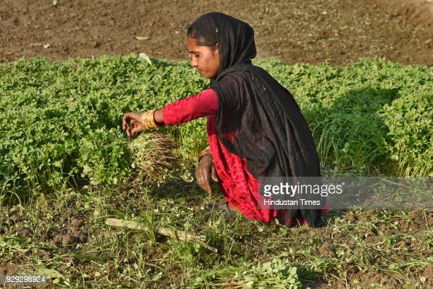 Rashmi a mother of three and originally hailing from Badaun Uttar Pradesh lives near a gas plant on March 8 2018 in New Delhi India She farms on a...