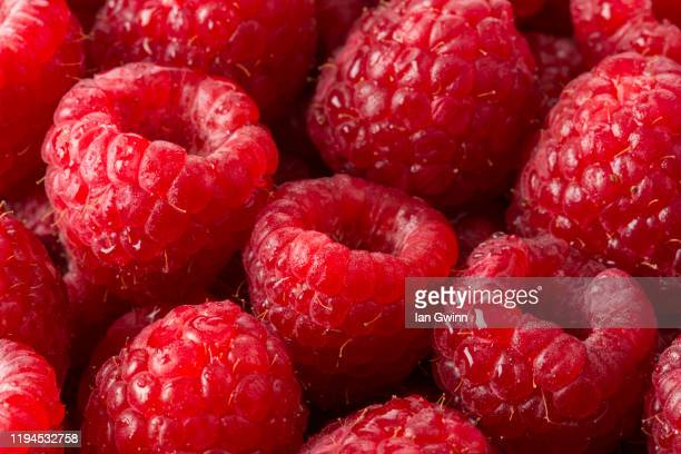 raspberries abstract - ian gwinn stock pictures, royalty-free photos & images