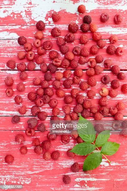 raspberries and leaf on wood - ラズベリー ストックフォトと画像