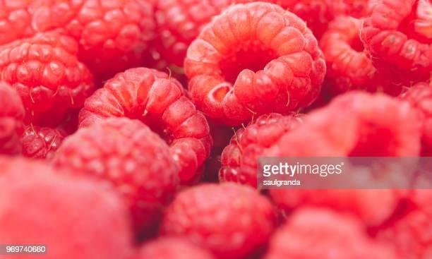 Raspberries full-frame