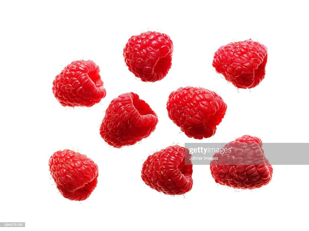 Raspberries on white background : Stock Photo