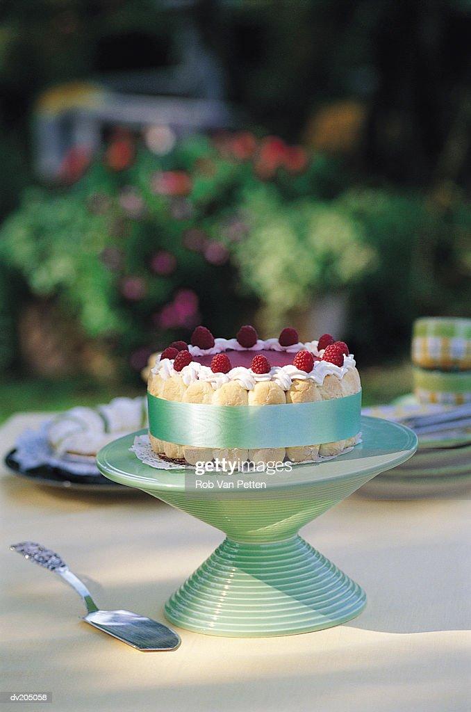 Raspberry cake : Stock Photo