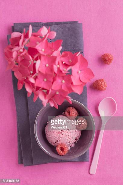 Raspberry icecream with poppy seed and flower