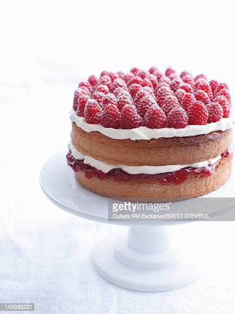 Raspberry layer cake on platter
