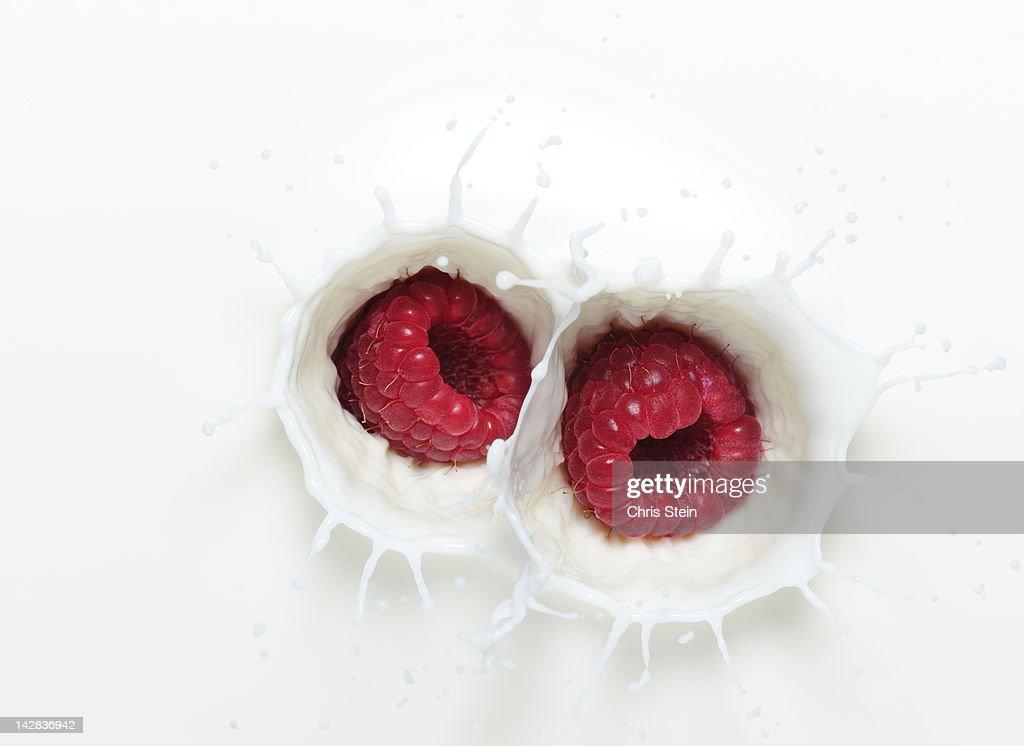 Raspberry Milk Splash : Stock Photo