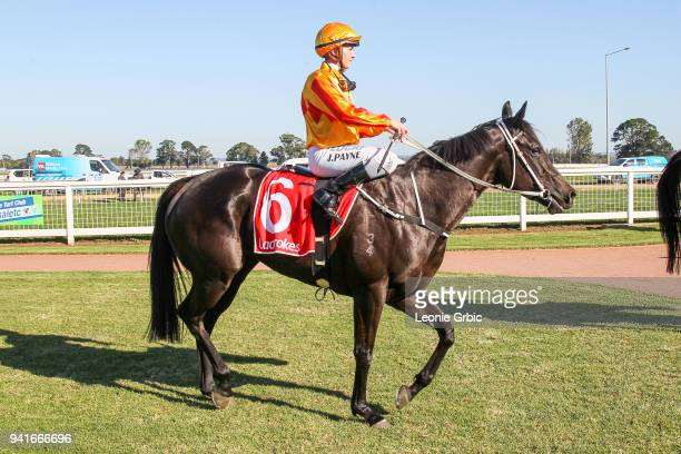 Raspberry Rose ridden by Jessica Payne returns after winning the Kwik Tip Bins FM BM64 Handicap at Sale Racecourse on April 04 2018 in Sale Australia