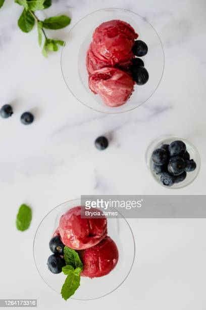 raspberry sorbet garnished with blueberries and mint - brycia james stock pictures, royalty-free photos & images
