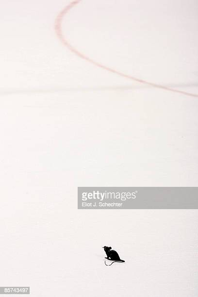 A rat is thrown on the ice after the game while the Florida Panthers celebrate their win against the Ottawa Senators at the Bank Atlantic Center on...