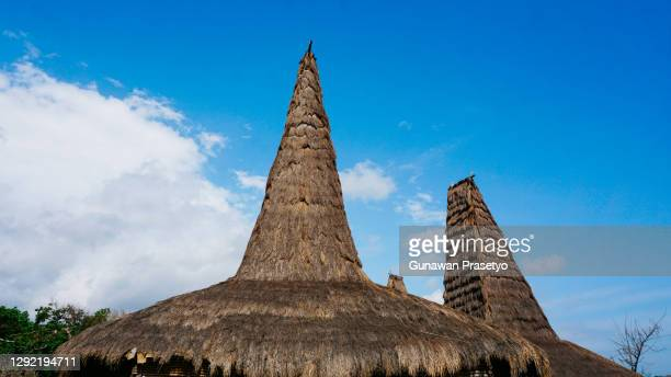 ratenggaro traditional village, sumba island, indonesia - westwood neighborhood los angeles stock pictures, royalty-free photos & images