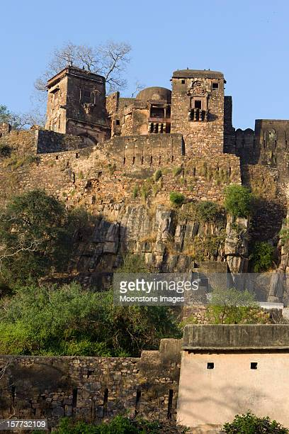rathambhore fort inn rajasthan, india - ranthambore national park stock pictures, royalty-free photos & images