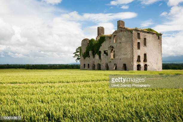 rathcoffey castle in rathcoffey, county kildare, ireland - kildare stock photos and pictures