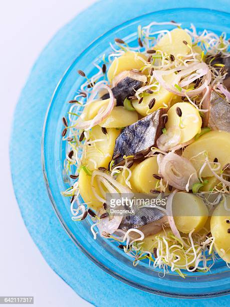 Ratte potatoes,smoked herrings and fennel sprout salad