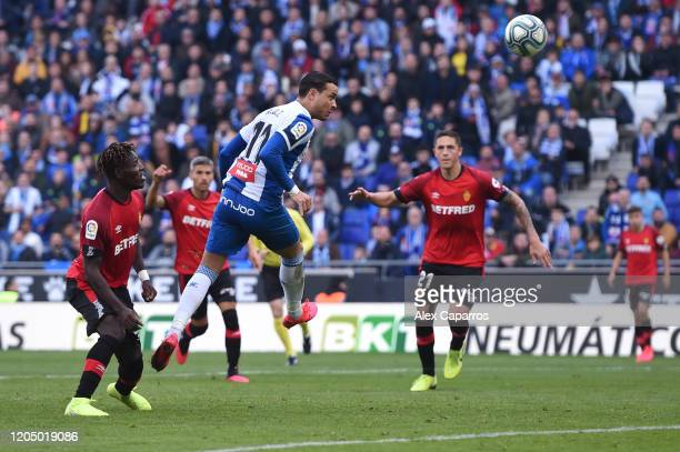 Raul de Tomas of RCD Espanyol scores his team's first goal during the La Liga match between RCD Espanyol and RCD Mallorca at RCDE Stadium on February...