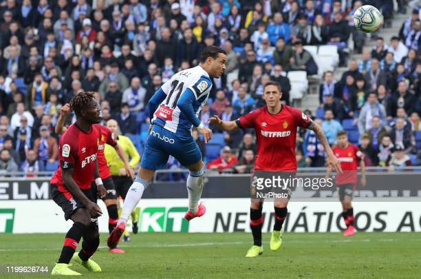Raul de Tomas scores during the match between RCD Espanyol and RDC Mallorca corresponding to the week 23 of the Liga Santander played at the RCDE...