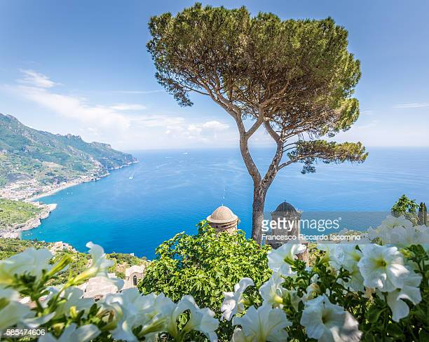 ravello, italy - sorrento stock pictures, royalty-free photos & images