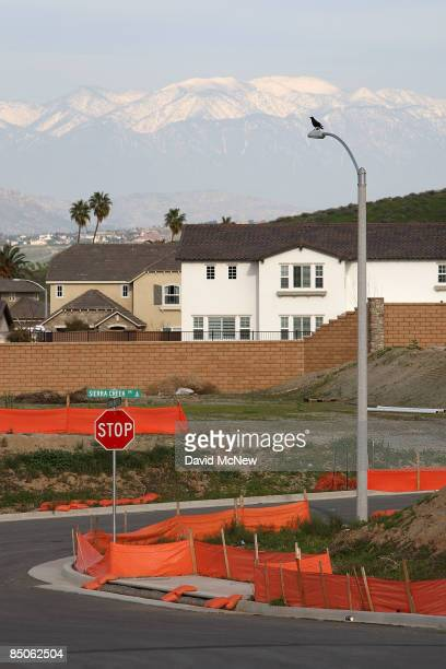 A raven roosts on a streetlight over an idle home construction site where construction has been halted on February 24 2009 near Riverside California...