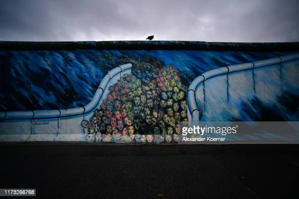 A raven sits on top of remaining pieces of the Berlin Wall at the East Side Galleray an openair gallery consisting of a series of murals painted...