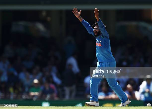 Ravindra Jadeja of India appeals successfully for the wicket of Usman Khawaja of Australia during game one of the One Day International series...