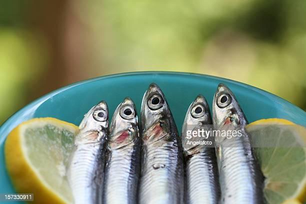生の煮干しとレモンスライス - オキスズキ ストックフォトと画像