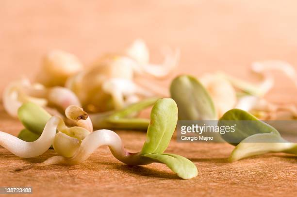 Raw bean sprouts.