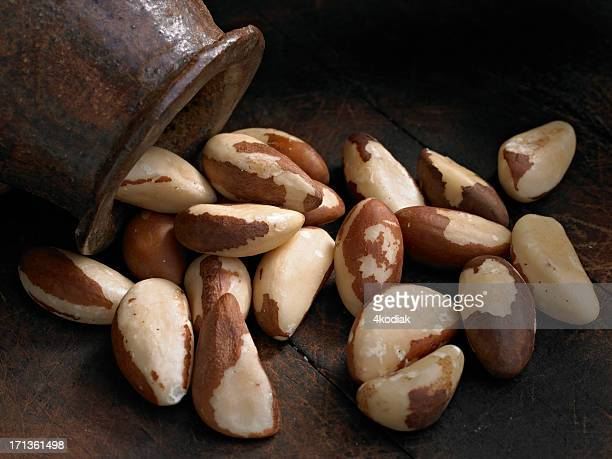 raw brazil nuts - brazil nut stock photos and pictures