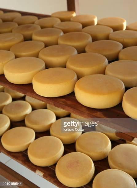 raw cheese canastra cheese - 熟した ストックフォトと画像