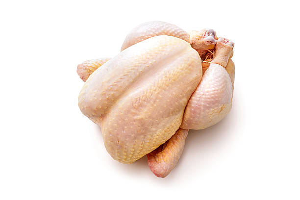 free raw chicken meat images pictures and royalty free stock
