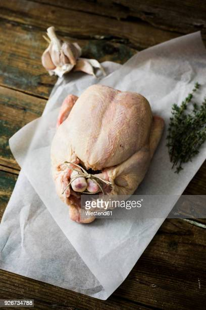 raw chicken on paper with garlic and thyme - poulet volaille domestique photos et images de collection