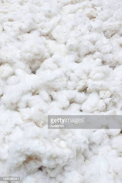 Raw Cotton Crops