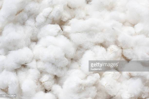 raw cotton crops - fiber stock pictures, royalty-free photos & images