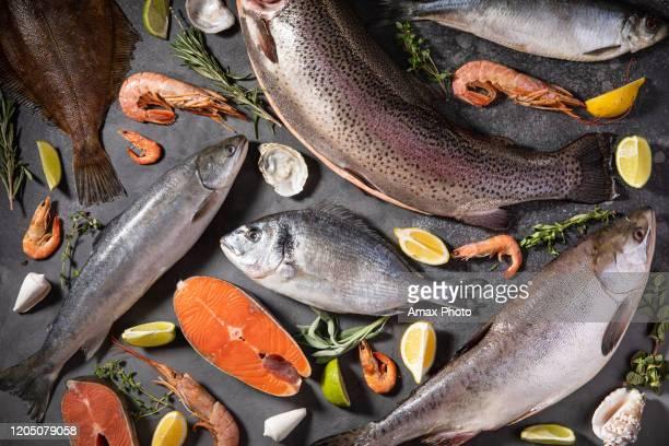 ruwe vissen op zwarte achtergrond. gezond zeevoedsel. overheadweergave.  diverse verse vissen - rauw stockfoto's en -beelden