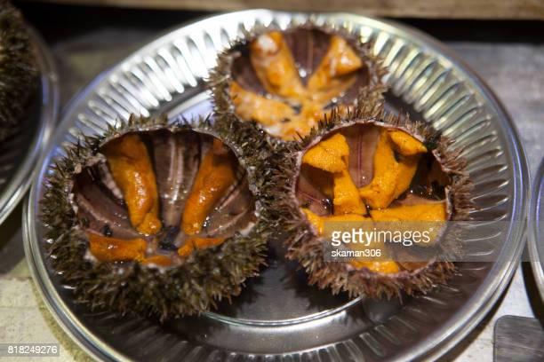 raw fresh urchin for sell near hakodate morning fresh market  hakodate hokkaido - sea urchin stock pictures, royalty-free photos & images