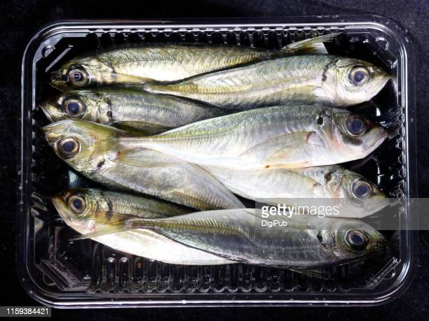 raw jack fish in plastic package on black background - trachurus stock pictures, royalty-free photos & images