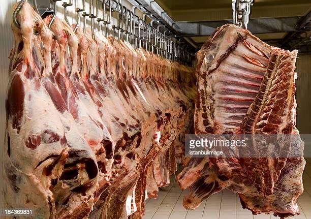 生の肉 - 食肉処理場 ストックフォトと画像