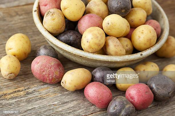 Raw multi-colored small potatoes in ceramic bowl on wood