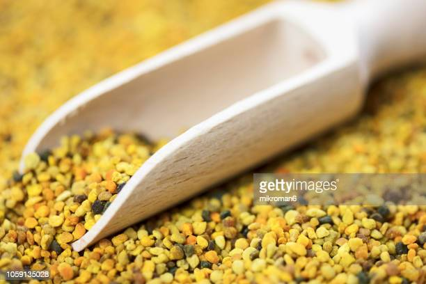 Raw organic bee pollen. Bee pollen granules. Apitherapy