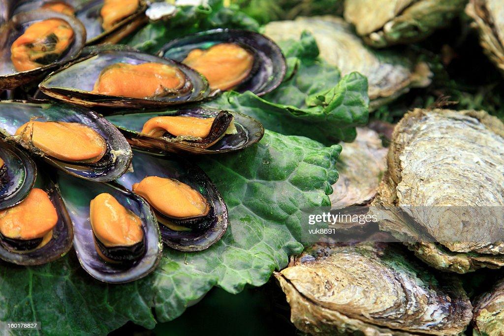 Raw oysters on the market : Bildbanksbilder