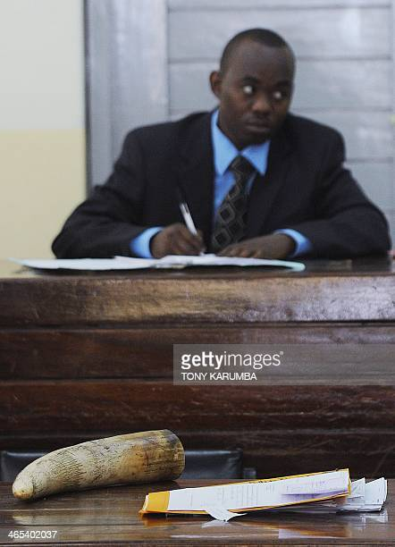 A raw piece of elephant ivory is exhibited in a Nairobi court during the trial of Tang Yong Jian a Chinese national arraigned in a Nairobi court on...