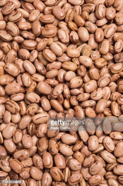 raw pinto beans - pinto bean - fotografias e filmes do acervo