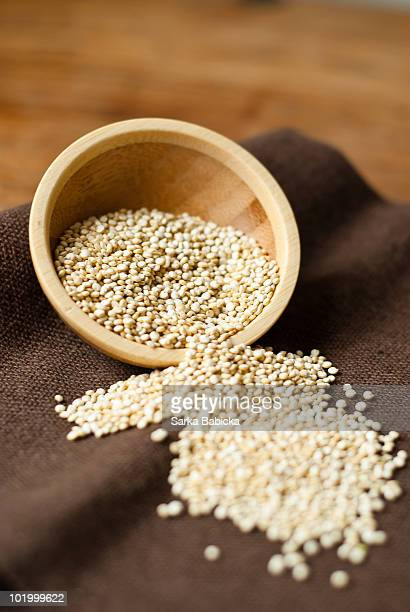 Raw quinoa grain