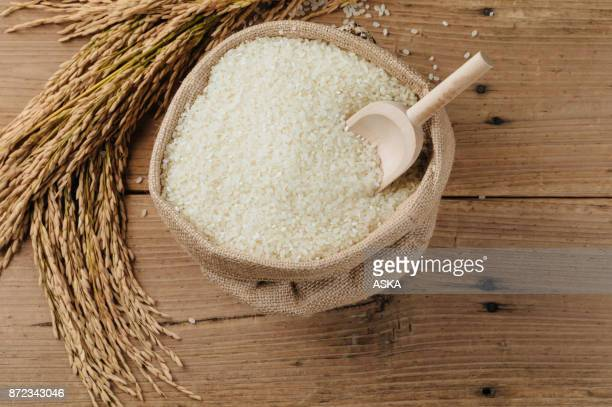 raw rice grain and dry rice plant on wooden table - sack stock pictures, royalty-free photos & images